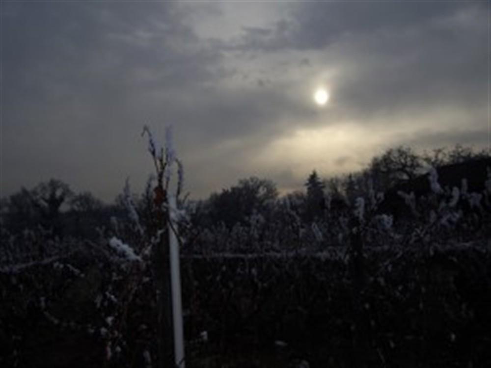 Soleil pâle d\'hiver
